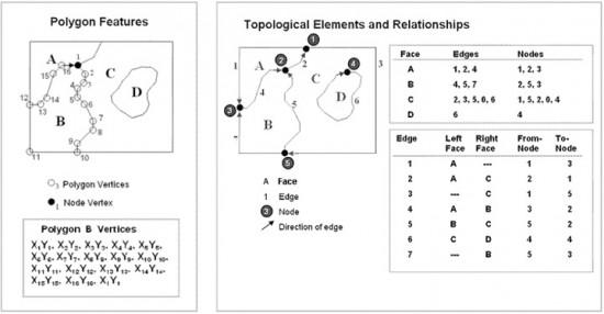 topology_vector_model